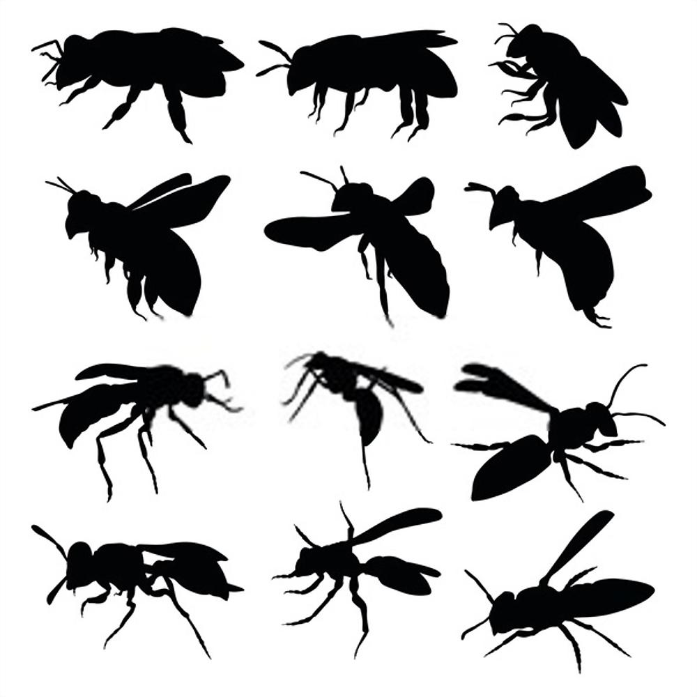 Tratamiento Contra los Insectos Voladores