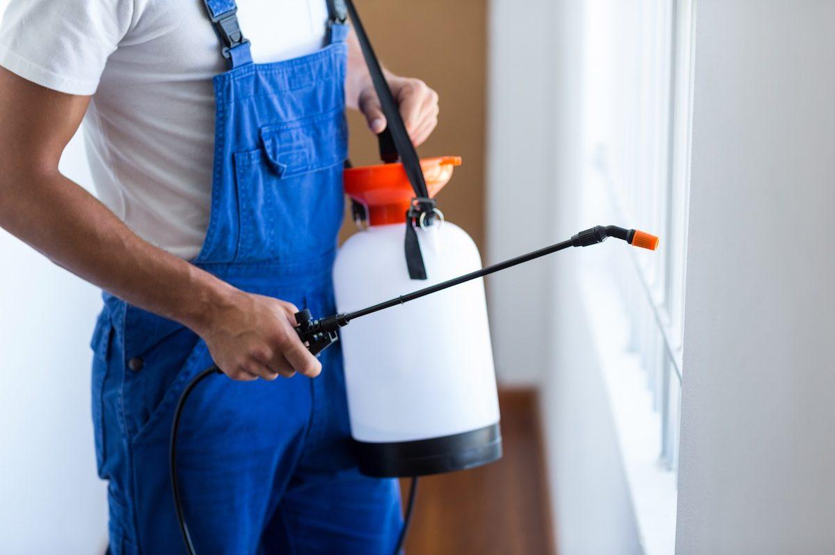 Mejores productos para Exterminar las plagas en Comunidades de vecinos