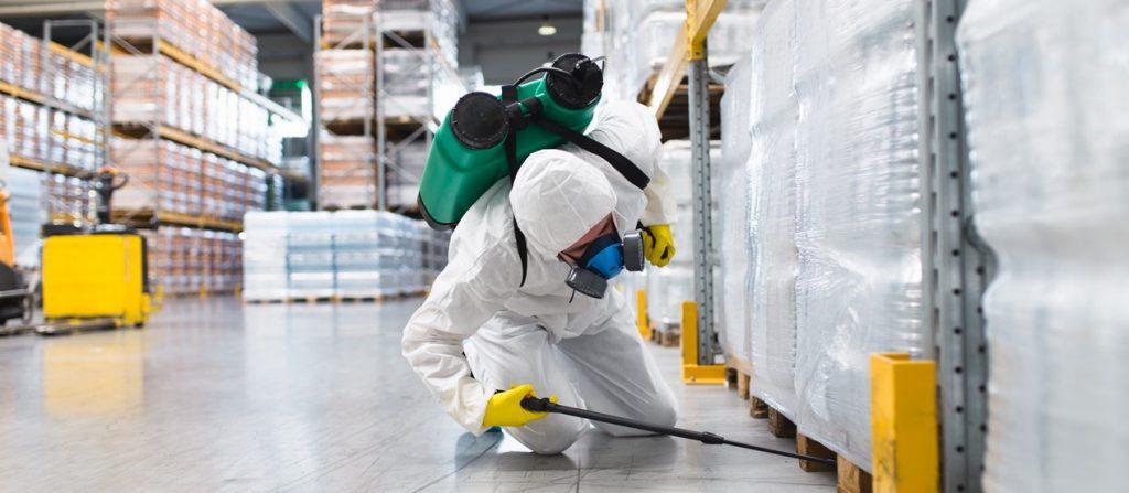 Mejores productos para Exterminar las plagas en Almacenes