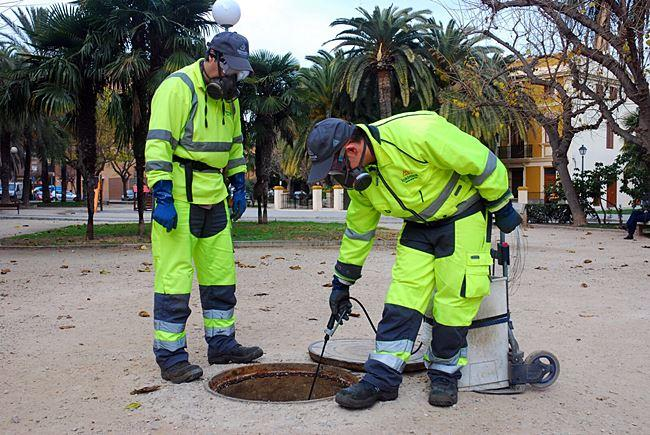Fumigación de plagas en ayuntamientos