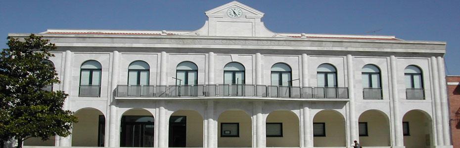 Control de plagas en ayuntamientos