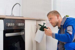 Control de plagas casas y pisos