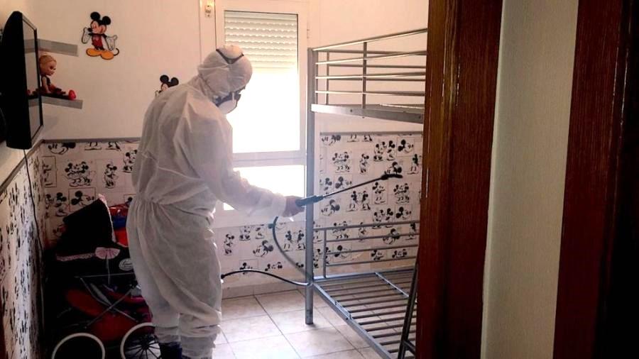 Mejores productos para Exterminar las plagas en casas y pisos