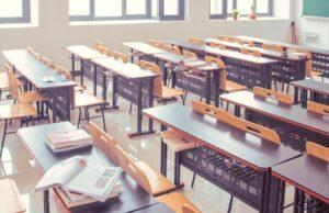 Control de plagas colegios