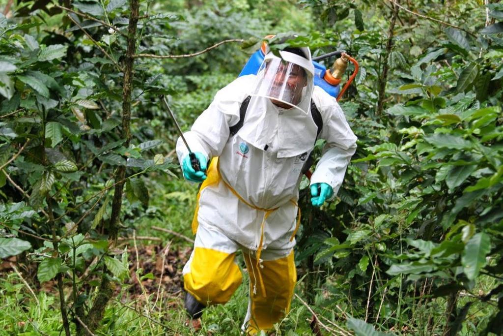 Empresas de control de plagas en el campo