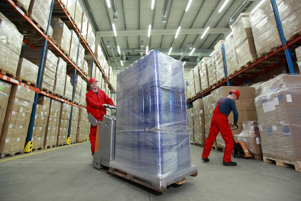 Control de plagas empresas de logística