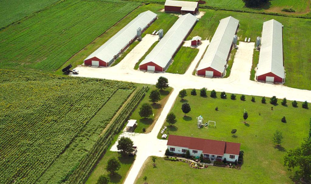 Control de plagas granja