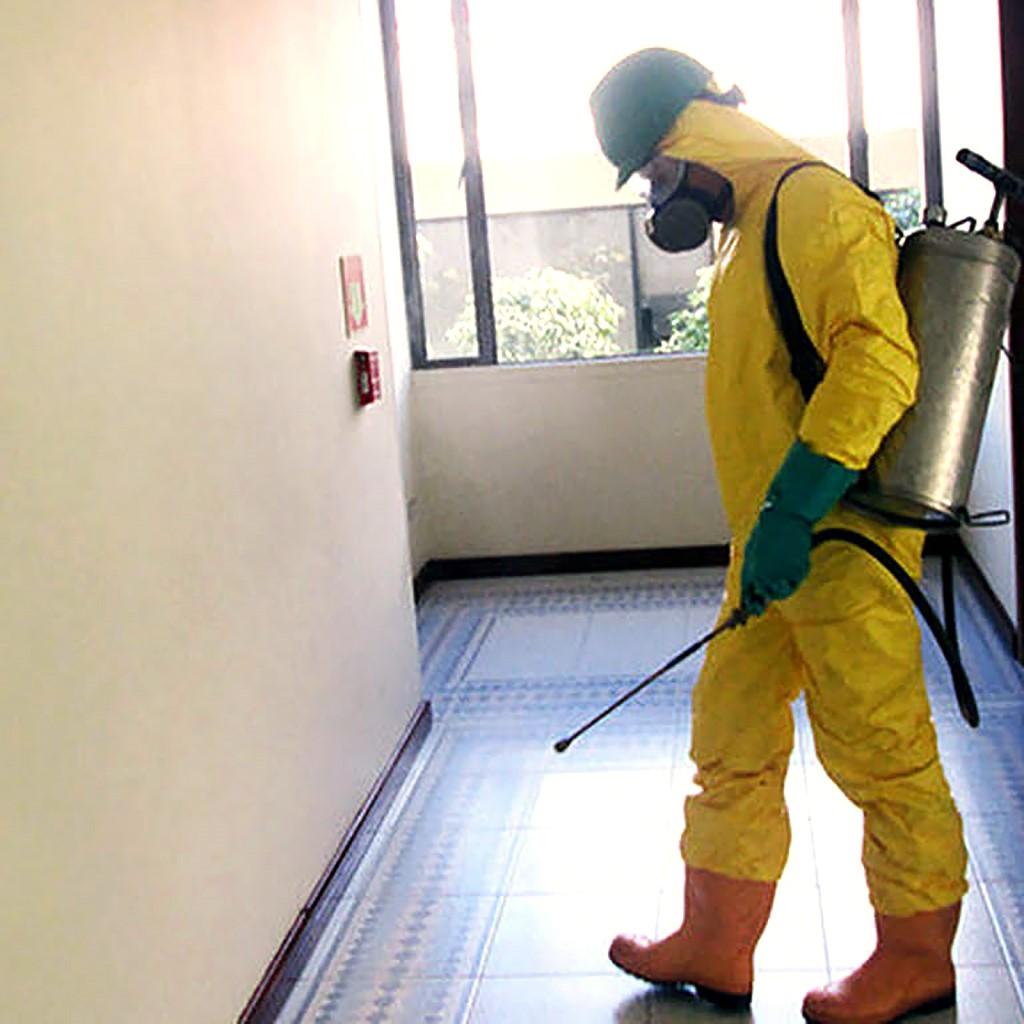 Mejores productos para Exterminar las plagas en Hoteles