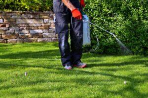 Control de plagas jardines