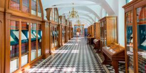Control de plagas en museos