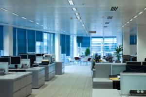 Control de plagas en oficinas