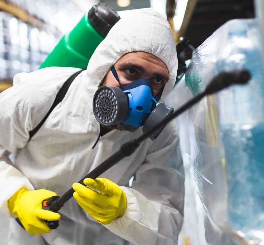 Empresas de control de plagas en supermercados
